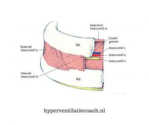 Spierpijn door hyperventilatie